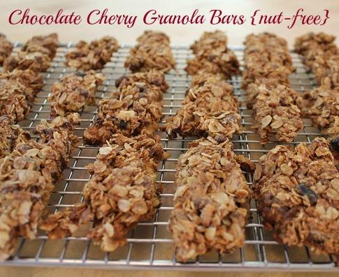 Chocolate cherry granola bars_cut_rec reduxe_08 14_edited