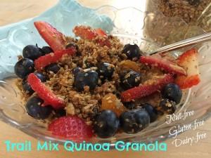 Quinoa granola_dish_edited