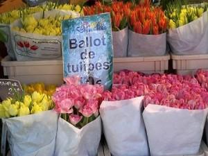 Preggo Paris_flowers 2_edited