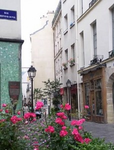 Preggo Paris_flowers_edited